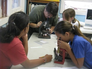 Students at Aka'ula school on Molokai learn how to identify the little fire ant
